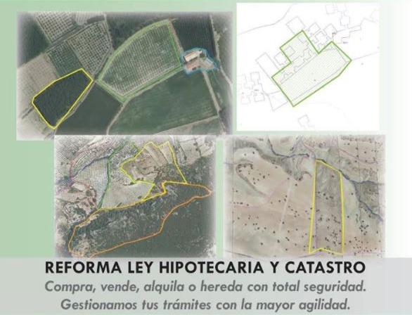 Correlación entre el Registro de la Propiedad y el Catastro Inmobiliario