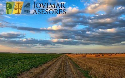 Ayudas para proyectos de desarrollo rural de la Junta de Andalucía