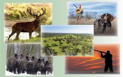 Gestión integral de cotos de caza