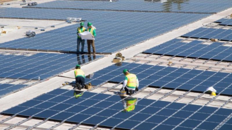 Grupo Jovimar busca alquiler y venta de fincas para desarrollar huertos solares