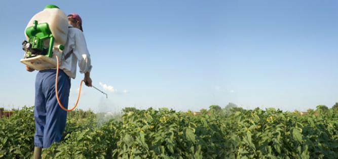 Cursos de agricultura y ganadería